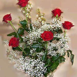 Half Dozen Red Roses with Gypsophila